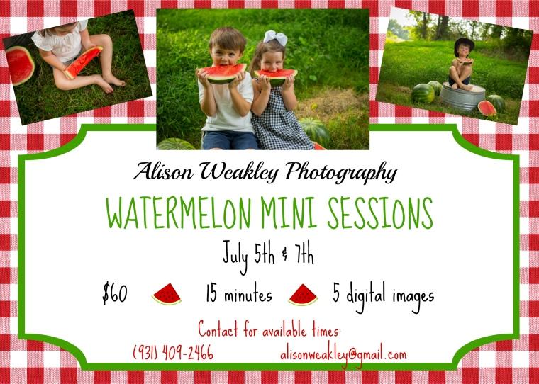 watermelon minis.jpg