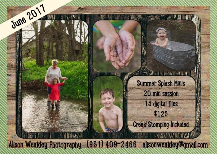 creek minis.jpg